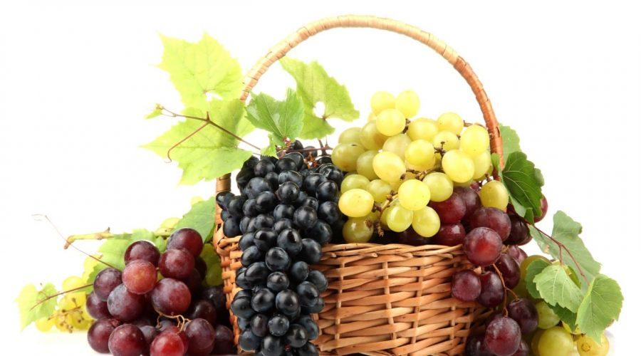 זני יינות כשרים